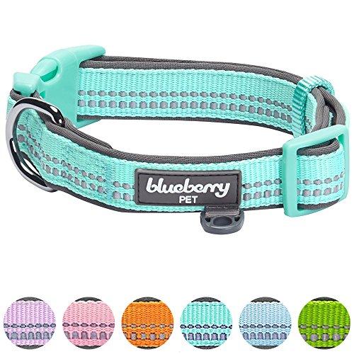 Blueberry Pet 2,5cm L 3M Reflektierendes Neopren-Gepolstertes Hundehalsband in Mint Blau, Groβe Halsbänder für Hunde (Hund Mint)