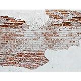 Carta da parati moderna - Muro di pietra 396 x 280 cm Fotomurale tessuto non tessuto Soggiorno - 100% made in Germany - 9083012a