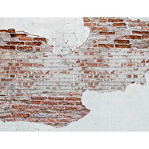 Fototapeten Steinwand 352 x 250 cm Vlies Wand Tapete Wohnzimmer Schlafzimmer Büro Flur Dekoration Wandbilder XXL Moderne Wanddeko - 100{e3a8ac7e44571b116d56e1b9f0d2d01a228eb9c546d01bce34efb1d55c16650a} MADE IN GERMANY Runa Tapeten 9083011a
