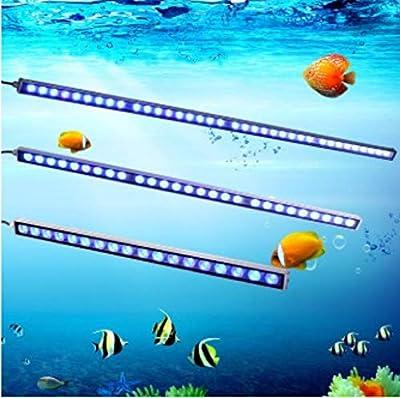 xiadsk Barre de pêche de Barre Lumineuse de réservoir de Poissons de LED imperméable IP65 imperméable avec l'éclairage d'aquarium de Plante de Corail