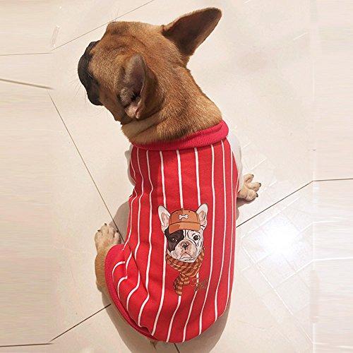 Saingace Manteau Chien Petite Taille Hiver Chaud Rayé Imprimé Sweat Veste Manteaux Chemise Pull pour Petit/Moyen Chien Chihuahua Yorkshire Bouledogue Francais