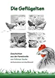 Die Geflügelten: Geschichten aus der Hamelsrolle