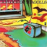 Songtexte von A Flock of Seagulls - A Flock of Seagulls