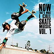 Now That's What I Call Skate Music Vol. 1