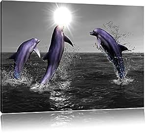 Happy delfini che saltano nel mare nero / bianco Formato: 120x80 su tela, enorme XXL Immagini completamente Pagina con la barella, stampe d'arte su murale con telaio, più economico di pittura o pittura ad olio, nessun manifesto o poster