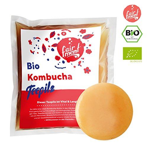 Original Kombucha Tee Pilz in Premium Größe Besonders Vitaler Scoby in Bio-Qualität für 1-5L Mit Kombucha Getränk Anleitung und Erfolgsgarantie von Fairment ® -