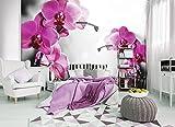 FORWALL Fototapete Tapete Rosa Orchidee P4 (254cm. x 184cm.) Photo Wallpaper Mural AMF10155P4 Gratis Wandaufkleber Natur Blume Blumen Orchidee Orchideen Garten