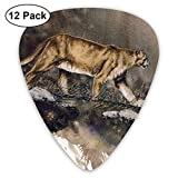 Cougar Classic Guitar Pick Player's Pack for Electric Guitar,Acoustic Guitar,Mandolin,Guitar Bass