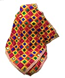 #9: Beautiful Heavy Phulkari Dupatta in Multicolour with Mirrors