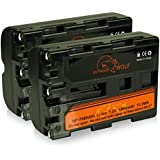 Bundle - 2x Power Batería NP-FM500H para Sony Alpha 57 SLT-A57   58 SLT-A58   65 SLT-A65   77 SLT-A77   99 SLT-A99   DSLR-A200   DSLR-A300   DSLR-A350   DSLR-A450   DSLR-A500   DSLR-A550   DSLR-A560   DSLR-A580   DSLR-A700   DSLR-A850   DSLR-A900