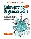 Reinventing Organizations visuell: Ei...