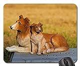 Gaming-Mauspads, Mauspad, Dog Doges Keramik Grabstein Natur Gras