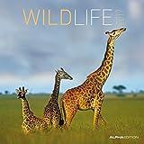 Wildlife 2017 - Broschürenkalender