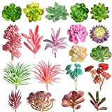 FEPITO Random 20 Pz Piante grasse artificiali Uncotted Echeveria Picks Piante succulente Mixed Bulk assortiti Faux Succulente Grandi steli verdi per la casa Indoor Garden Decoration