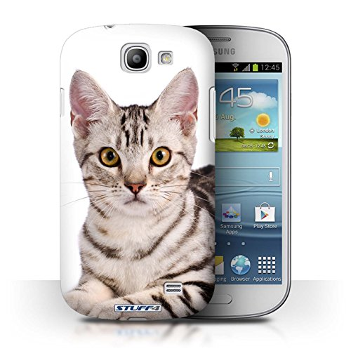 coque-de-stuff4-coque-pour-samsung-galaxy-express-i8730-american-shorthair-design-especes-de-chats-c