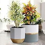 La Jolíe Muse Blumentöpfe Übertöpfe Keramik 2er Set, Klassisches Design Weiß & Gold, Rund & Achteckig Ø16.5 x H15 cm für Innen - 6