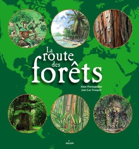 La route des forêts