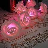 20 LED Rose Flower Romantic Garden String Light Christmas Decor