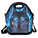 Silver Wolf Reusable Insulated Lunch Bag School Picnic Thermal Carrying Gourmet Lunchbox Lunch Tote Container Organizer For Women,Teens,Adults-Lunch Boxes For Outdoors,Work, Office, Schoo
