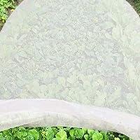 JYCRA - Telo antigelo per Piante, in Tessuto Non Tessuto di Alta qualità, Riutilizzabile, per Piante da Giardino e Verdure, Tessuto Non Tessuto, Bianco, 2m x 6m
