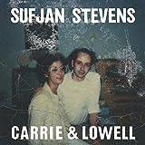 Carrie & Lowell / Sufjan Stevens, chant, comp. | Stevens, Sufjan (1975-....). Compositeur