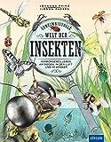 Geheimnisvolle Welt der Insekten: Verborgenes Leben am Boden