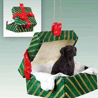 Conversation Concepts Geschenk Box Flat Coated Retriever grün Ornament schwarz -