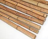 Bambus 300cm gelbbraun Durch. 3 bis 4,0cm, Moso Natur hitzebehandelt - Bambus Rohr Bambus Latten farbige Bambusrohre Bamboo Bambus Halbschale Bambusstangen --> großes Sortiment an Bambusrohre und Rohre aus Bambus Bambus-Rohre