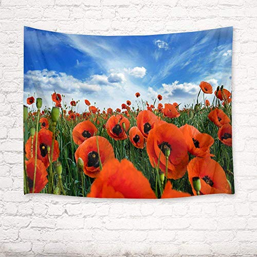 Blue Floral Tapestry (BAOQIN Tapisserie Flower Tapestry Poppy Tapestry Wall Hanging Red Floral Blue Sky and White Cloud Nature Scenery Wall Blanket for Bedroom Living Room Dorm Decor 80 X 60 Inch)
