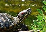Das Leben der Schildkröten (Wandkalender 2019 DIN A4 quer): Einzigartige Reptilien: Land- und Wasserschildkröten (Monatskalender, 14 Seiten ) (CALVENDO Tiere)