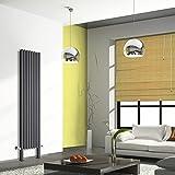 Hudson Reed TDRA007FE - Radiador Calentador Diseño Vertical Doble Panel con Pies de Soporte - Acero Antracita - 2000 x 472mm - 1465 Vatios - Calefacci