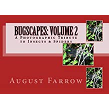 BugScapes: Volume 2: A Photographic Tribute to Insects & Spiders