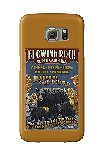 Blowing Rock, North Carolina - Black Bear Family Fall Colors (Galaxy S6 Cell Phone Case, Slim Barely There)