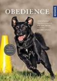 Obedience: Verschiedene Trainingsansätze für jede Übung