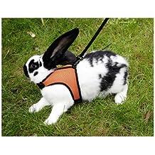 SPORT Arnés para conejos con correa flexible de 120cm