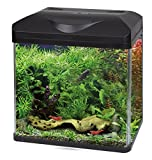 Wave Acquario Laguna LED 40