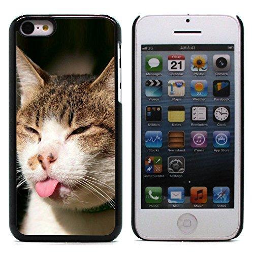 Graphic4You Baby Cats Love Tier Design Harte Hülle Case Tasche Schutzhülle für Apple iPhone 5C Design #4