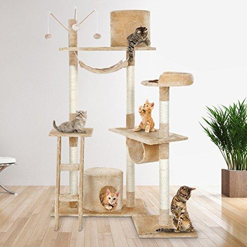Cat Climbing Towers