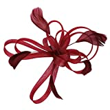 Fascinator elegant mit Federn Haarschmuck hut vintage modisch für Weihnachten Halloween Braut Kostüm Karneval Fasching Royal Ascot Schleier Mädchen Frauen Damen Headwear Mini aus Mesh Weinrot