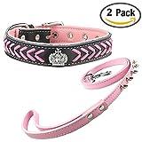Newtensina Hundehalsband und Leine Set Nylonriemen gewebt Bling Halsband Leder Diamante Welpen Halsband mit nieten Leine für Hunde