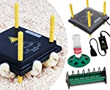 Küken-Aufzucht-Set: Wärmeplatte 25x25cm (15W, 230V) mit Schutzhaube und Temperaturregler +Kükentränke +Futtertrog für die professionelle Kükenaufzucht, Heizmatte, Kükenwärmer, Heizkabel, Inkubator, Kunstglucke, Wärmebirne