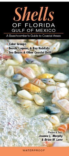 Shells of Florida-Gulf of Mexico: A Beachcomber's Guide to Coastal Areas by Jeanne L. Murphy and Brian W. Lane (2012-04-01)