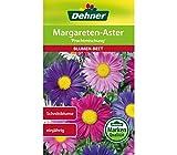 Dehner Blumen-Saatgut, Margareten-Aster