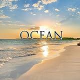 Ocean - Sound Effects Alarm Sounds Alert Tones Weckertöne Sonneries Du Réveil Wake Up Tones Sveglia Tono Tonos De Alarma - Single