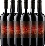 6er Paket - Rondeur Appassimento IGP 2017 - La Grange mit VINELLO.weinausgießer | halbtrockener Rotwein | französischer Wein aus Languedoc| 6 x 0,75 Liter