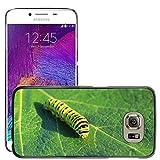 Just carcasa caliente estilo teléfono celular PC Funda rígida//m00138235Caterpillar Lepidoptera Hoja Verde//Samsung Galaxy S6(no para S6edge)