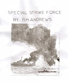 Special Strike Force (Brothers Book 2) by [Andrews, R H]