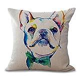PENVEAT quadratisch 45,7cm Französische Bulldogge Bedruckt Dekorativer Sofaüberwurf Kissen Kissen Pets Hunde Outdoor Living Room Decor, 2, Einheitsgröße