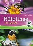 Nützlinge im Garten (LandLeben)