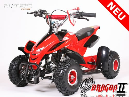Mini ATV Quad Pocketquad Kinderquad Kinderfahrzeug Dragon